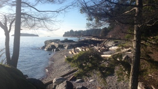 Seaside in Sechelt - Colleen Friesen